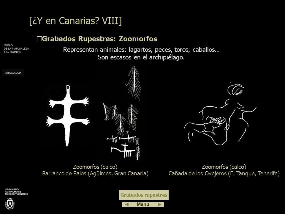 [¿Y en Canarias VIII] Grabados Rupestres: Zoomorfos